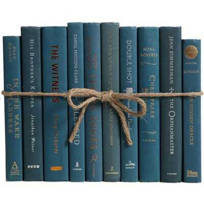 Authentic Decorative Books - By Color Modern Blue Spruce ColorPak (1 Linear Foot, 10-12 Books) - Birch Lane