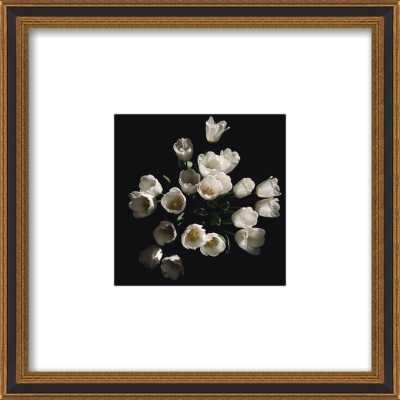 Floral 4 by Erik Melvin for Artfully Walls - Artfully Walls
