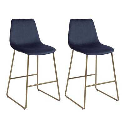 Aleena Counter Stool (set of 2) - Wayfair