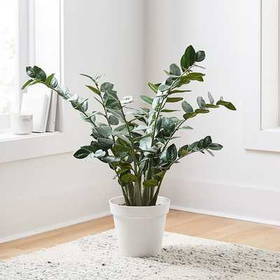 "Faux Potted ZZ, 36"" - West Elm"