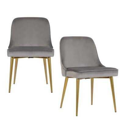 Bymedale Velvet Side Chair (Set of 2) - Wayfair