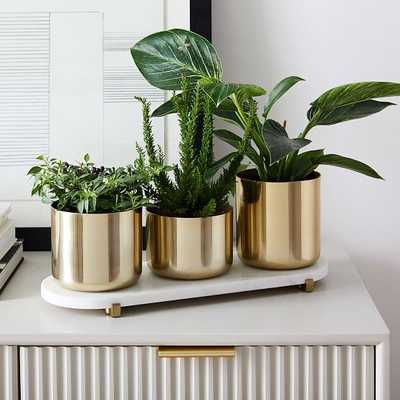 Calluna Planter Set With Pill Tray, Antique Brass & Marble, Set of 3 - West Elm