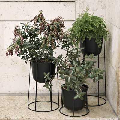 Pedestal Plant Stand - AllModern