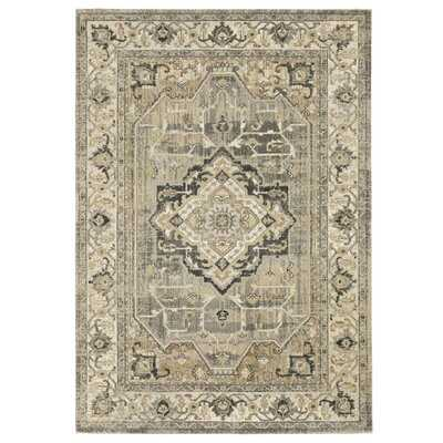 Aoibh Power Loom Beige/Gray Rug - Wayfair