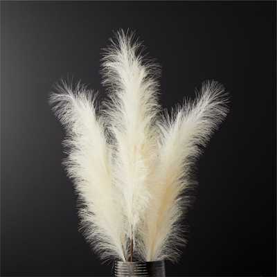 Faux Pampas Grass Ivory Stem Set of 3 - CB2