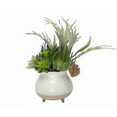 "15"" Artificial Foliage Succulent in Pot - Wayfair"