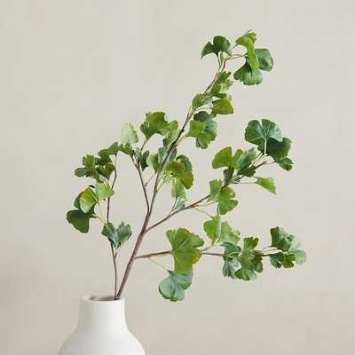 "Faux Gingko Branch, Green, 48"" - West Elm"