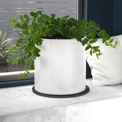 Sheilds Cylinder Fiberglass Pot Planter - AllModern