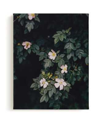 Moody White Roses Art Print - Minted