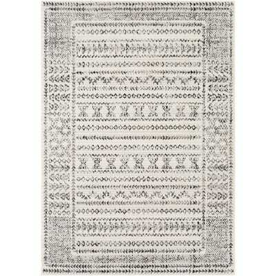 Morin Southwestern Gray/Black Area Rug - Wayfair