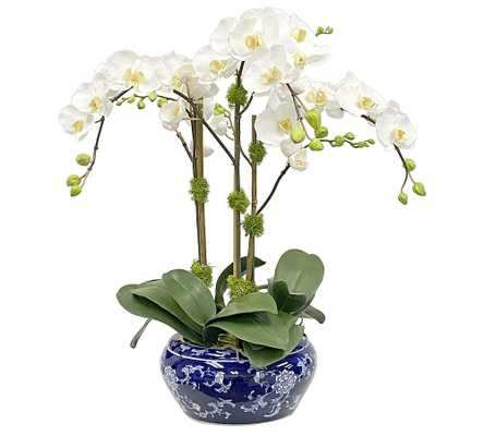 """Faux Orchid In Fish Bowl, 25"""" - Pottery Barn"""