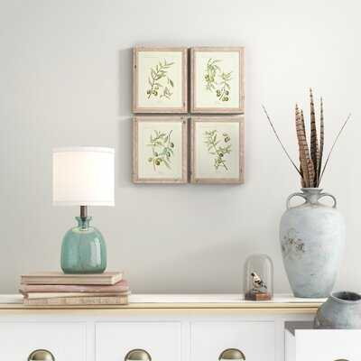 'Olive Leaf Botanical' 4 Piece Picture Frame Print Set - Birch Lane