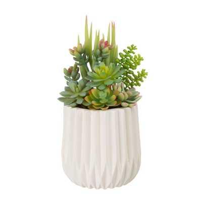 """Glitzhome 12""""H Succulent Plants in White Ceramic Pot - Home Depot"""