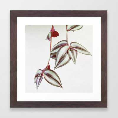 Trailing Leaves Framed Art Print by Cassia Beck - Conservation Walnut - X-Small-12x12 - Society6