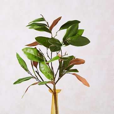 Faux Magnolia Branch - West Elm