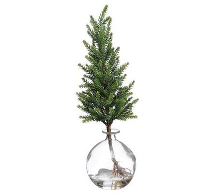 """18"""" Artificial Pine Tree In Glass Vase - Pottery Barn"""