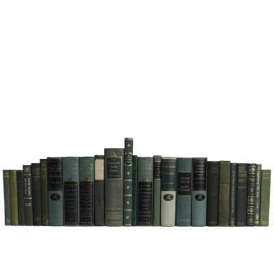 Booth & Williams 25 Piece Authentic Vintage Boxwood Theatre and Lyrics Book Decorative Book Set - Perigold
