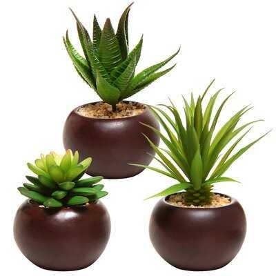 3 - Piece Artificial Succulent in Pot Set - Wayfair