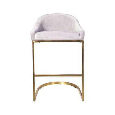 "Richerson Stainless Steel Velvet Fabric Stationary 26"" Bar Stool - Wayfair"