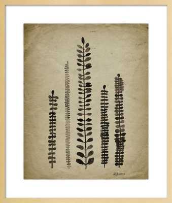 Rustic Ferns by Michelle Tavares for Artfully Walls - Artfully Walls