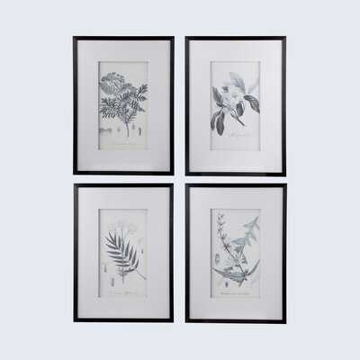 'Botanical' - 4 Piece Picture Frame Print Set on Paper - Wayfair