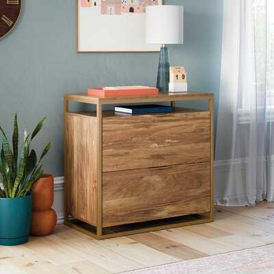 Sukhraj 2-Drawer Lateral Filing Cabinet - Wayfair