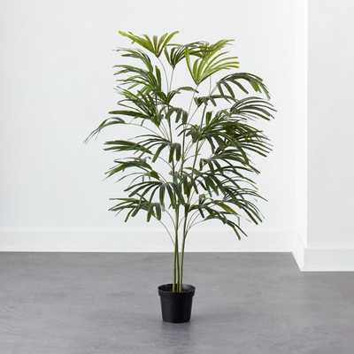 Potted Spade Tree 5' - CB2