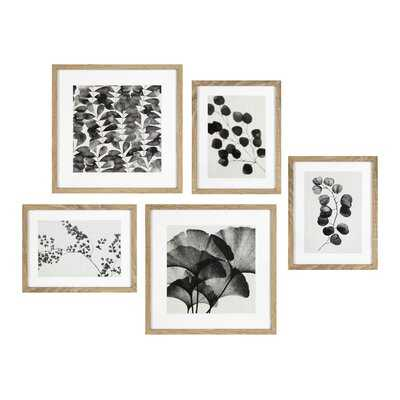 'Black and White Floral' by Home Designs - Floater Frame Painting Print on Canvas - Wayfair