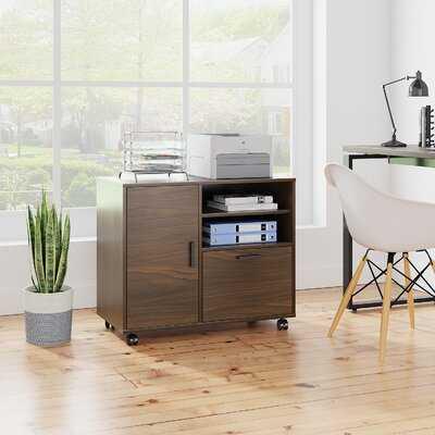 1-Drawer Mobile Lateral Filing Cabinet - Wayfair