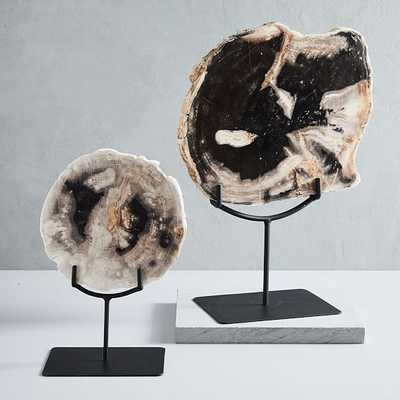 Petrified Wood Object on Stand, Small & Large Set - West Elm