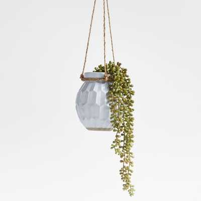 Phlox Ceramic Hanging Planter - Crate and Barrel