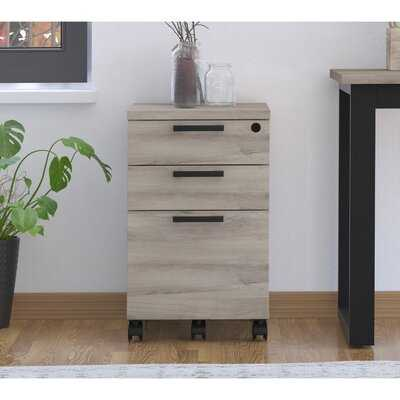 Tabb Industrial 3-Drawer Vertical Filing Cabinet - Wayfair