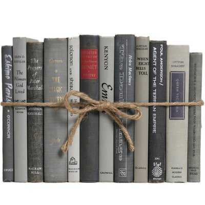 Authentic Decorative Books - By Color Modern Granite ColorPak (1 Linear Foot, 10-12 Books) - Birch Lane