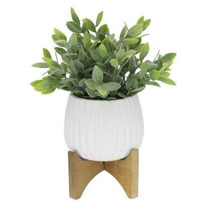 4.75'' Artificial Eucalyptus Plant in Planter - Wayfair