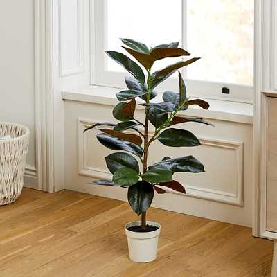 "Faux Potted Rubber Tree, 39"" - West Elm"