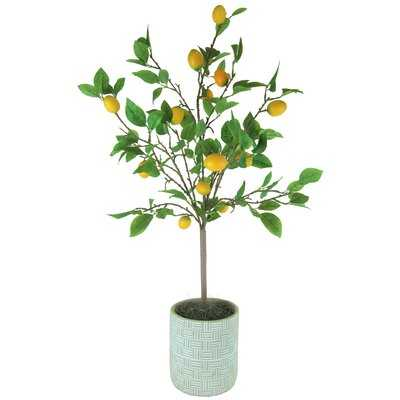 42'' Artificial Lemon Tree in Pot - Wayfair