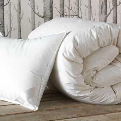 Eastern Accents Loure Winter Down Alternative Comforter Size: California King - Perigold