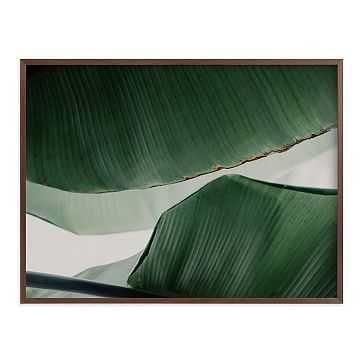 "Leaf & Light 4, Full Bleed 40""x30"", Walnut Wood Frame - West Elm"