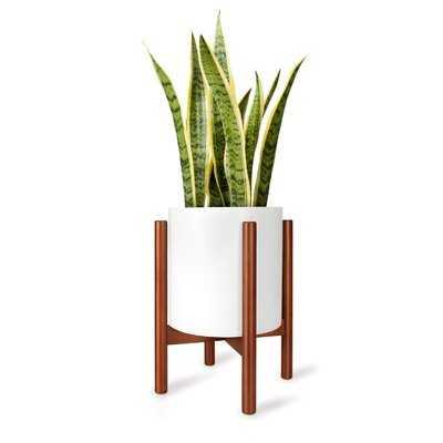 Jalen Free form Corner Plant Stand - Wayfair