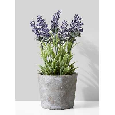 Flowering Plant Pot - Wayfair