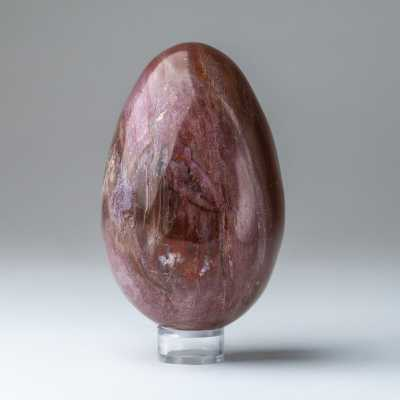 Astro Gallery of Gems Petrified Wood Egg Sculpture - Perigold