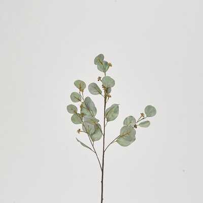 Spray Eucalyptus Branch - Wayfair