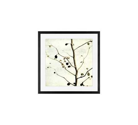 Dappled Framed Print by Lupen Grainne - Pottery Barn
