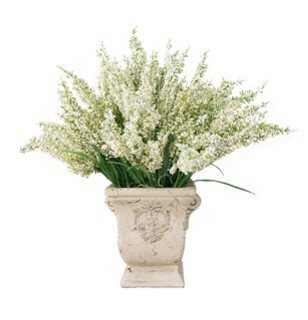 Ivory Heather in Stoneware Urn - One Kings Lane