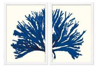 Miranda Baker, Blue Coral Diptych - One Kings Lane