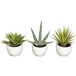 Set of 3 Southwest Collection Agave Silk Plants - Overstock