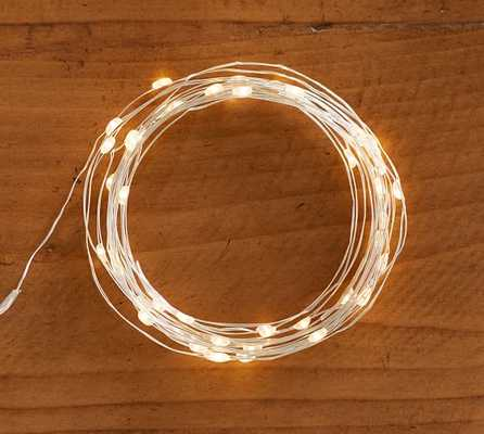 LED String Lights - Warm White - Pottery Barn