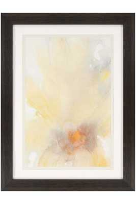 DAISY FRAMED WALL ART - Home Decorators