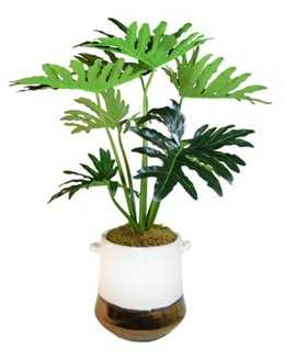 "40"" Philodendron Tree in Planter, Faux - One Kings Lane"