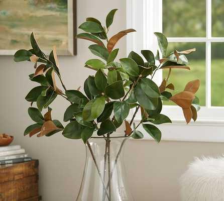 Magnolia Branch - Pottery Barn